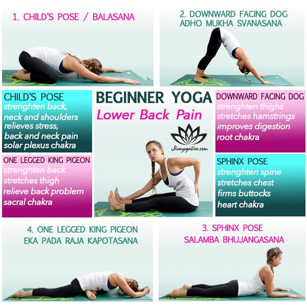 beginner yoga for lower back pain infographic