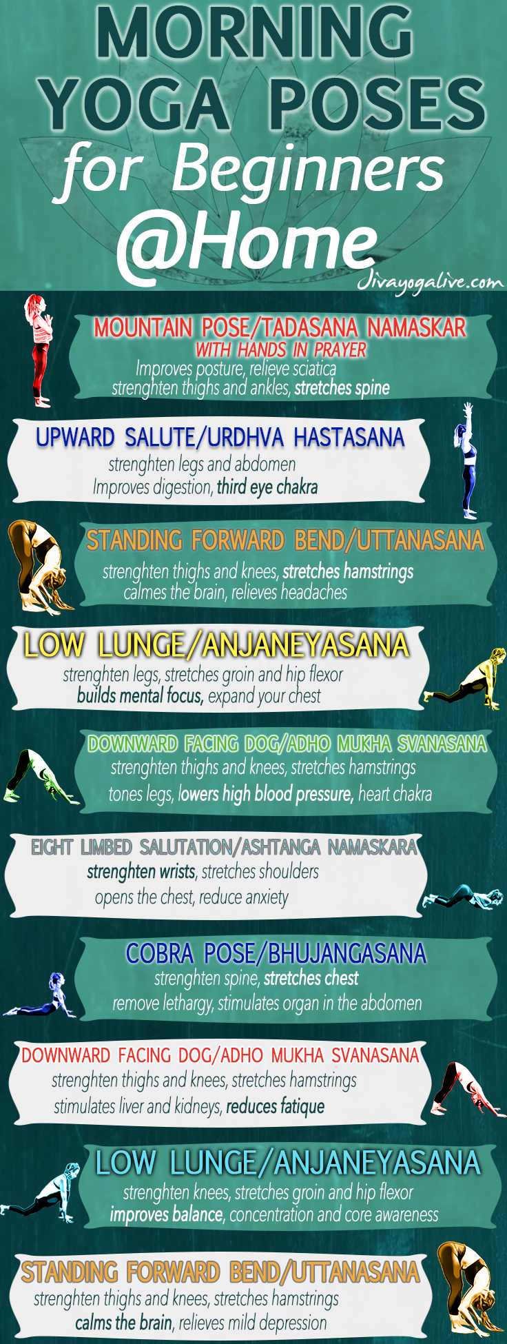 morning yoga poses for beginners at home infographic