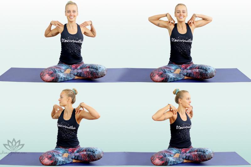 Shoulder and Torso Rotations