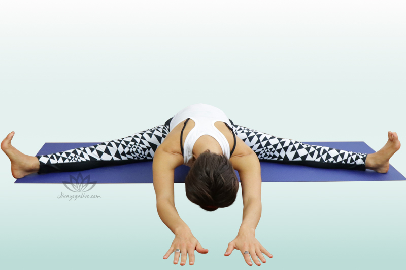 Wide Angle Seated Forward Bend - Upavishta Konasana