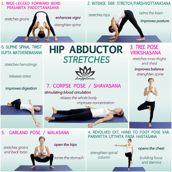 hip abductor stretches infographic