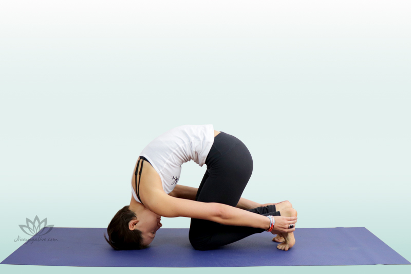 Rabbit Pose - Sasangasana
