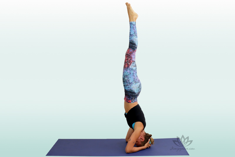 Headstand Pose - Shirshasana
