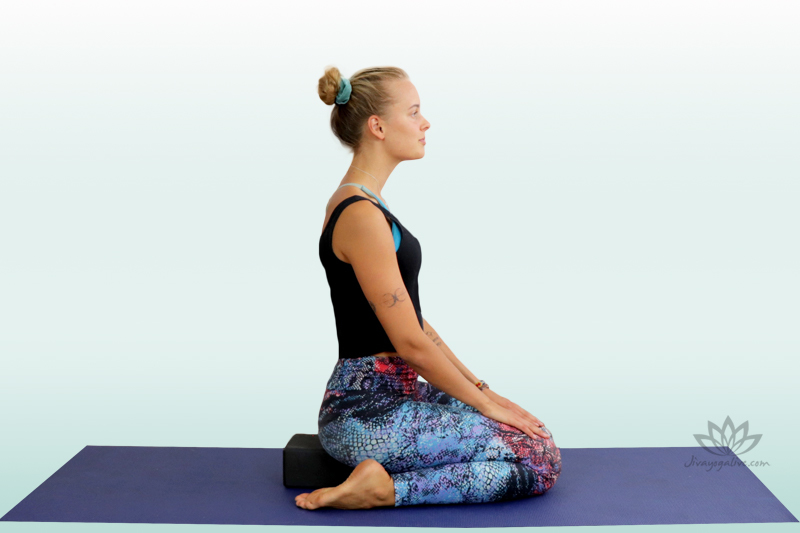 Hero Pose on block - Virasana