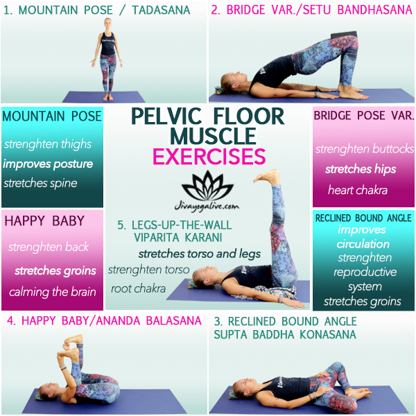 pelvic floor muscle exercises yoga infographic