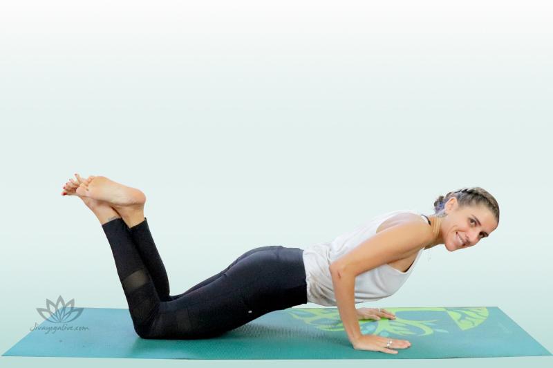Four Limbed Staff Pose Modification - Chaturanga Dandasana