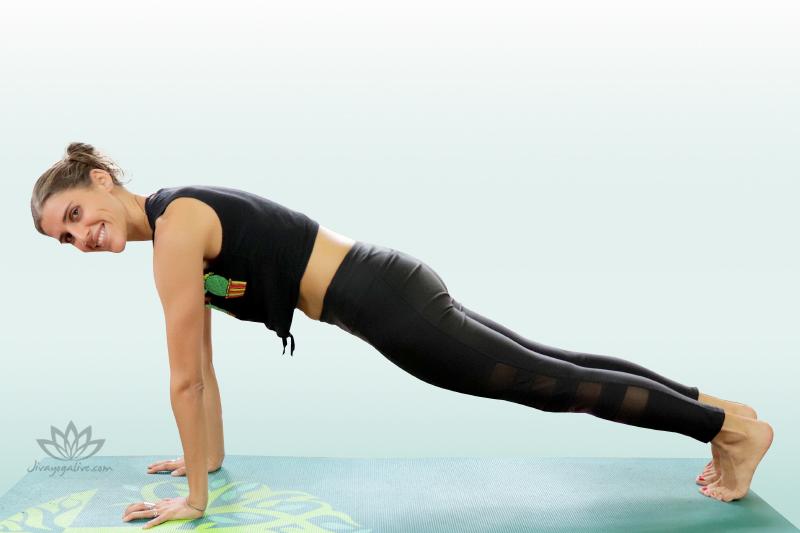 Plank Pose - Utthita Chaturanga Dandasana