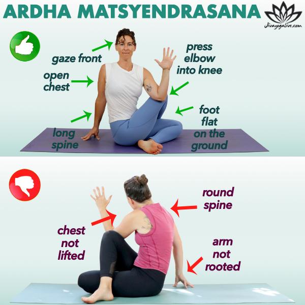 Ardha Matsyendrasana Infographic