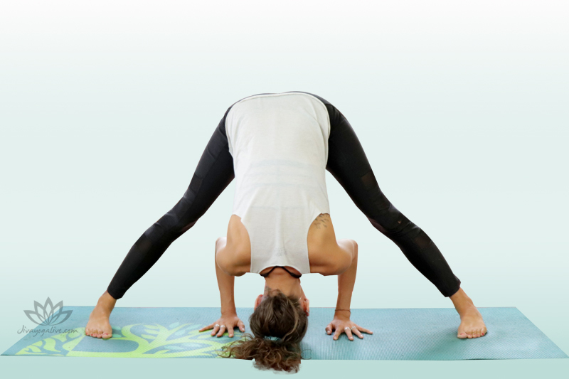 Wide-Legged Forward Bend - Prasarita Padottanasana A